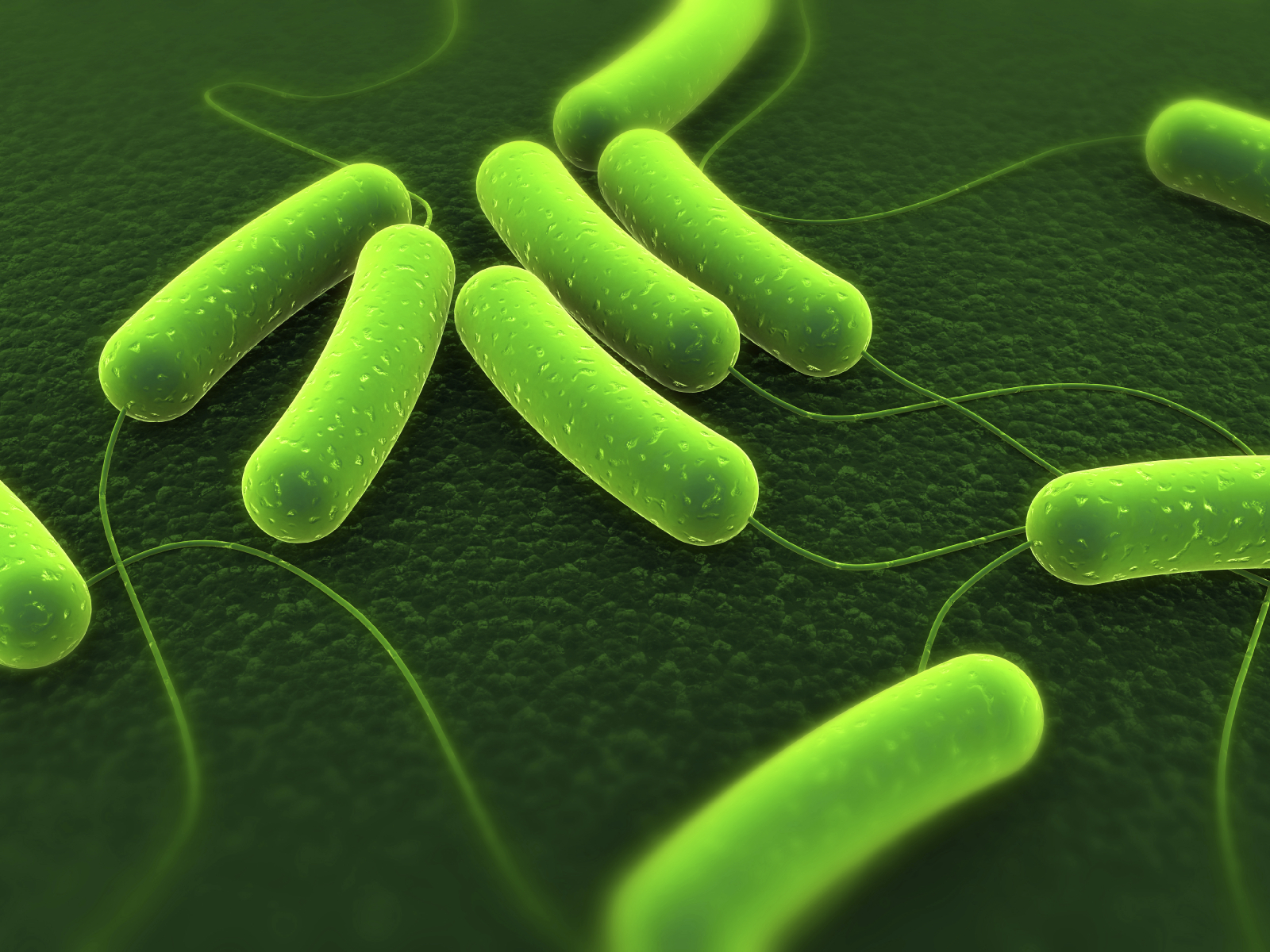 Food Poisoning Abroad Claims